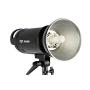 Импульсный свет FST PRO-600H